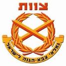 """צוות ארגון גימלאי צה""""ל"""