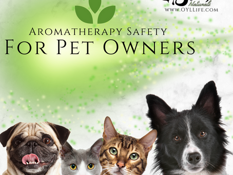 Aromatherapy safety for Pet Owners