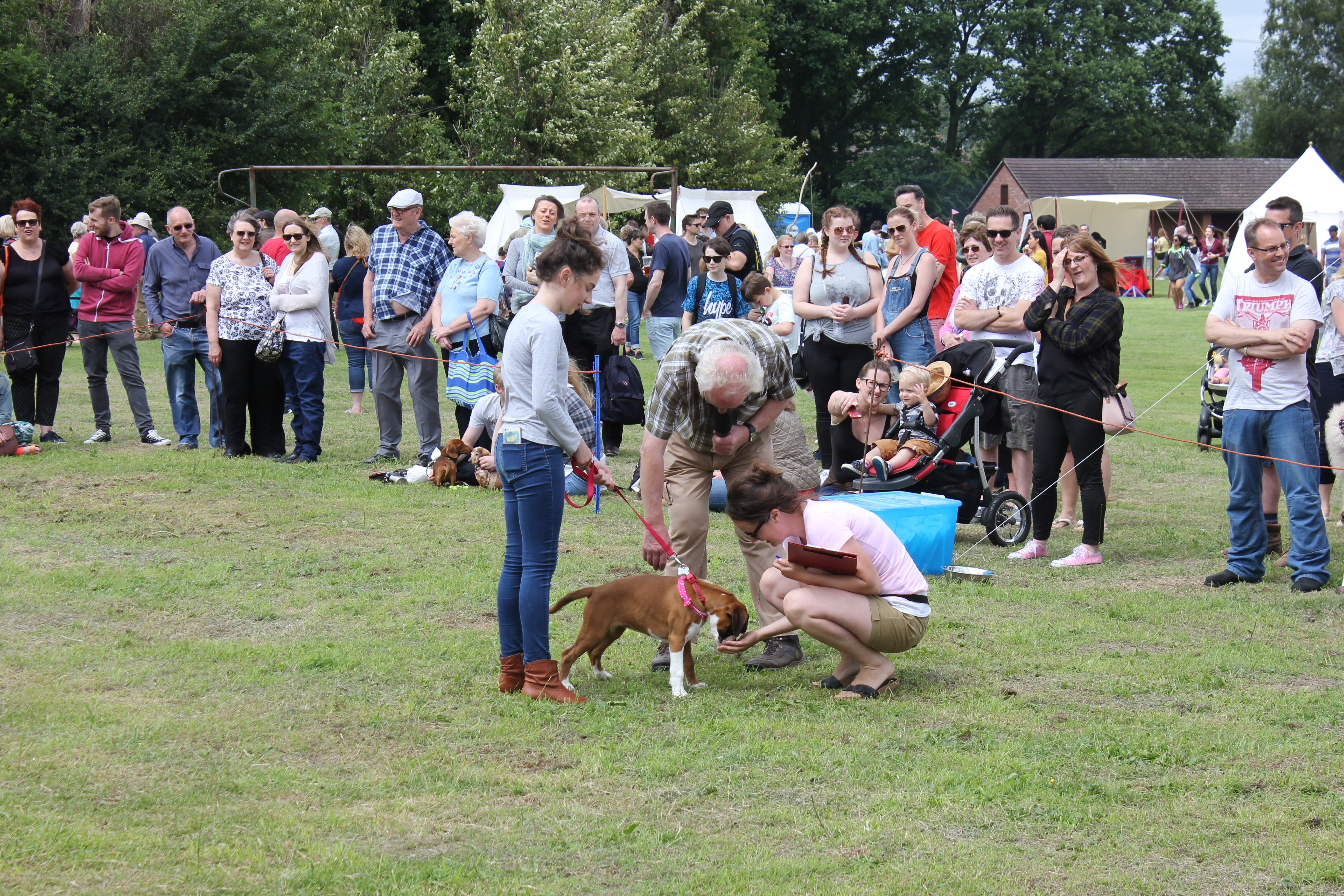 Elin judging at Sherfield dog show