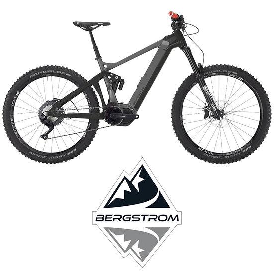 VTT électrique tout suspendu BERGSTROM ATV 960 LTD
