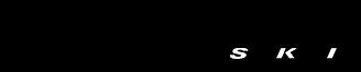 blizzard-ski-logo-png-transparent.png