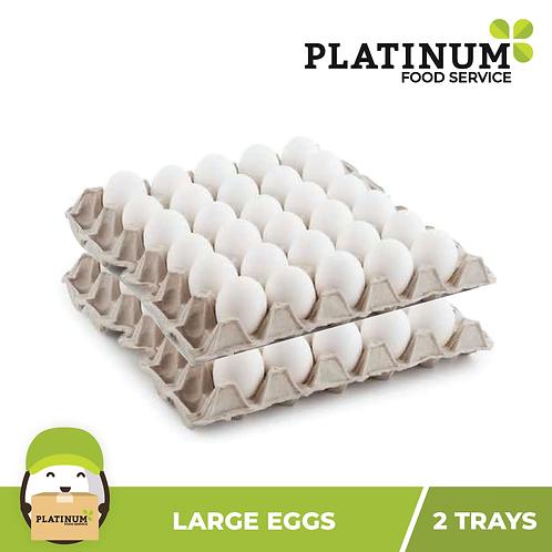 Eggs Large