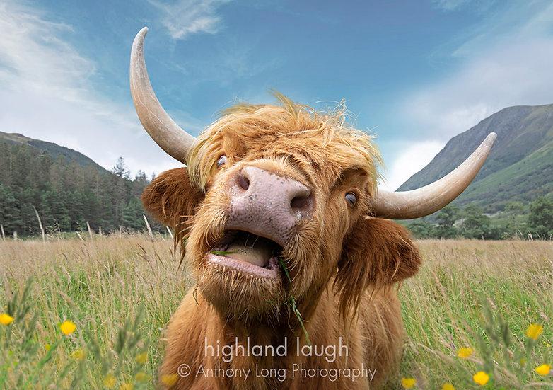 Highland Laugh