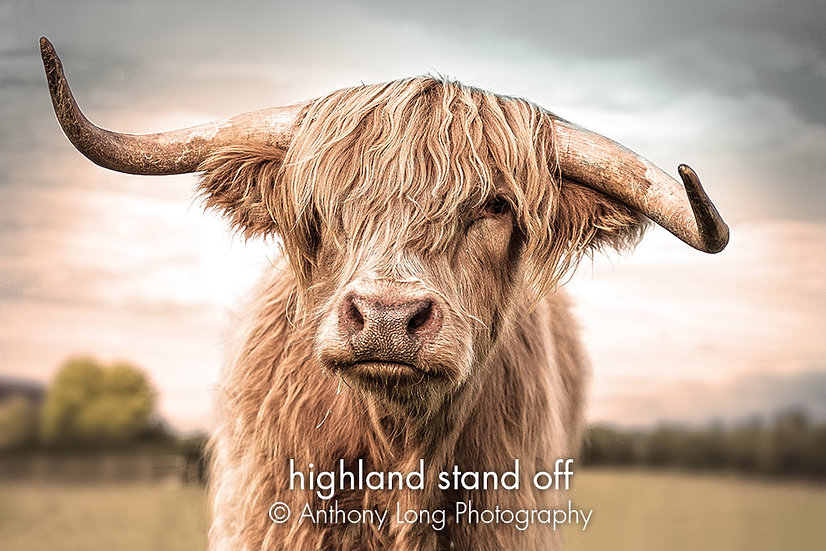 Highland stand off