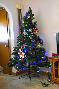 Xmas Tree 3 (1 of 1).jpg