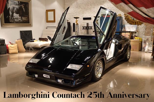 Lamborghini Countach 25th Anniversary For Sale Classic Insider
