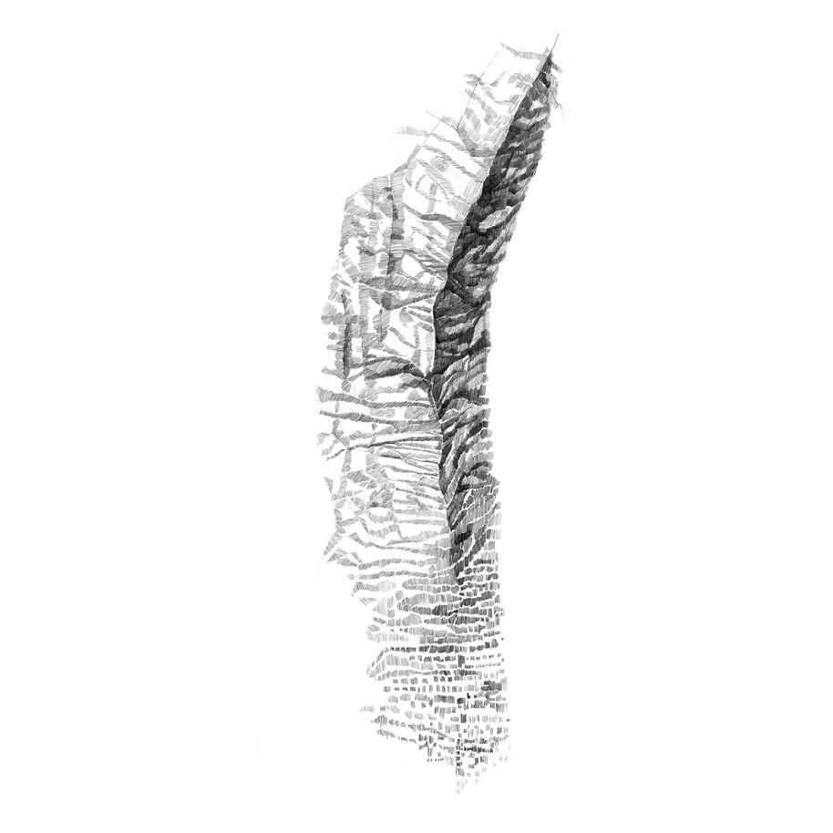 dessin au graphite 70 150 cm