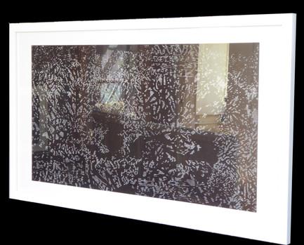 Corail récif  - gravure