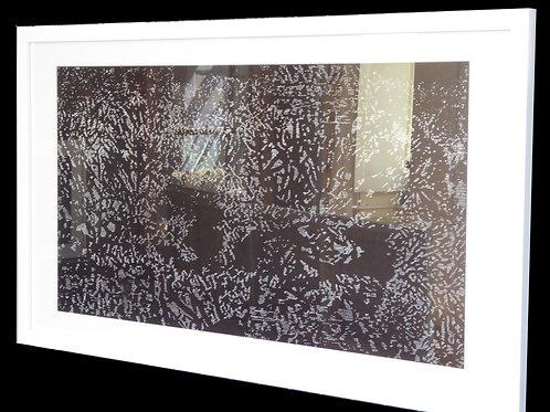 gravure récif de corail