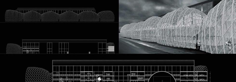 architecture bio mimetique