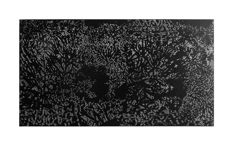 Récif de corail - gravure