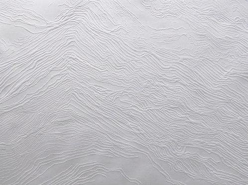 Gravure sismographie Ondes de pierre