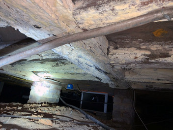 Crawlspace: what's in yours?