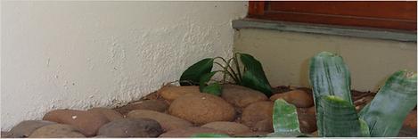 bloqueador de umidade schenkel impermeabilizantes