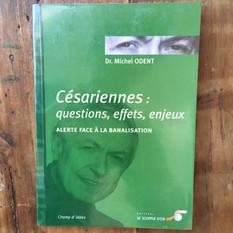 Césariennes, questions, effets, enjeux