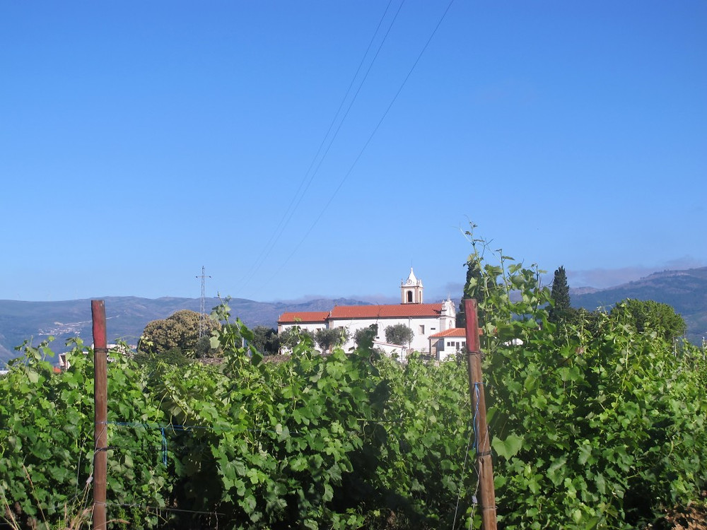 View from the Mateus House in Vila Real