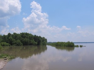 The enigmatic Mississippi River