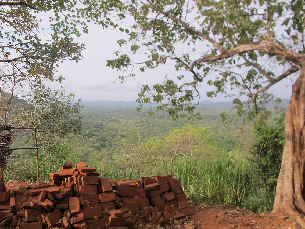View from the Lion's Paw at Sigiriya