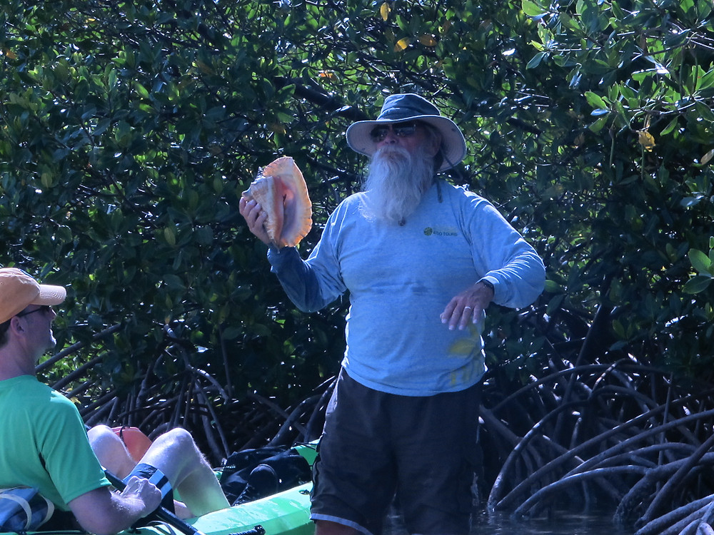 Tortuga Jack takes me on a backcountry mangrove kayaking tour.