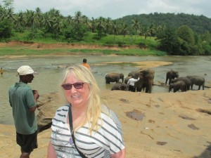 Me and elephants at the Pinnawalla Orphanage, Sri Lanka.