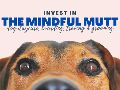 Invest in The Mindful Mutt's first brick-and-mortar location!