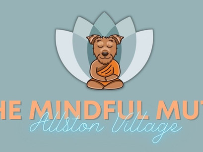 The Mindful Mutt: Dog care that gives back
