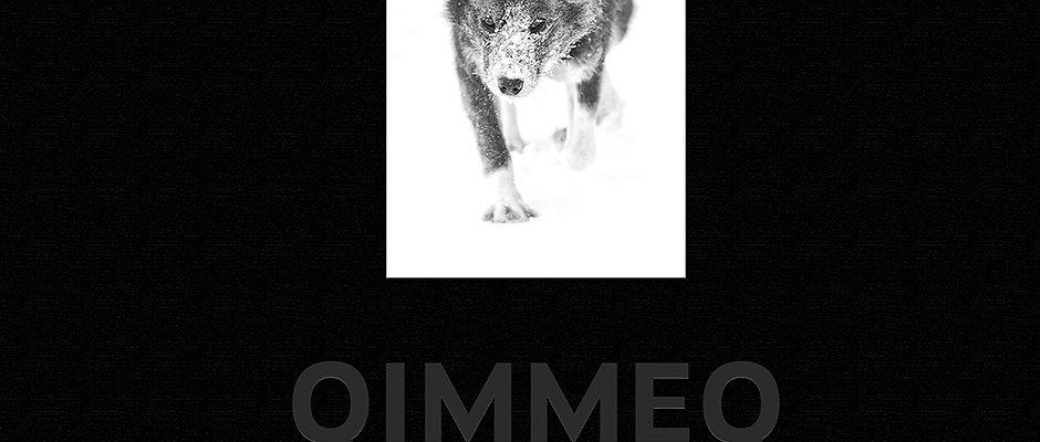 QIMMEQ - Den Grønlandske Slædehund - DANISH version