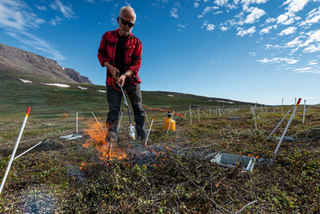 A tundra fire experiment to quantify changes in carbon and nitrogen dynamics
