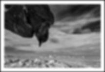 L1140052_sh_2.jpg