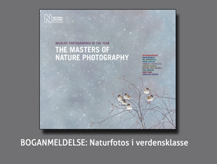 ANMELDELSE: The masters of Nature Photography