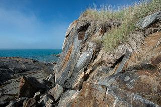 Bones exposed after cliff erosion