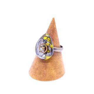 CLOPOA ring (7).jpg