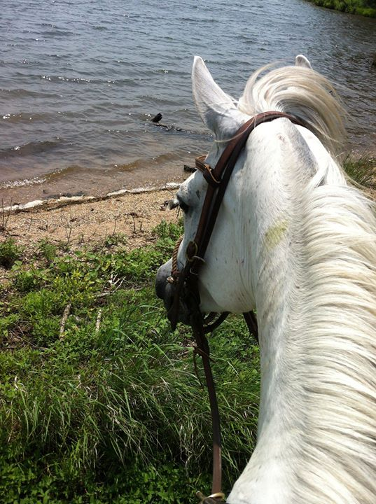 Trail riding in the Flint Hills