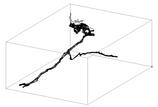 Explorações Subaquáticas no Olho do Moinho da Fonte – Gruta do Almonda