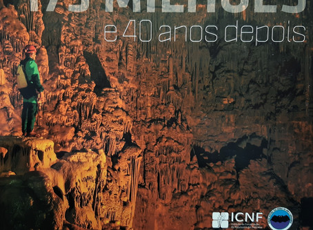 Technical and technological challenges in Alviela spring exploration
