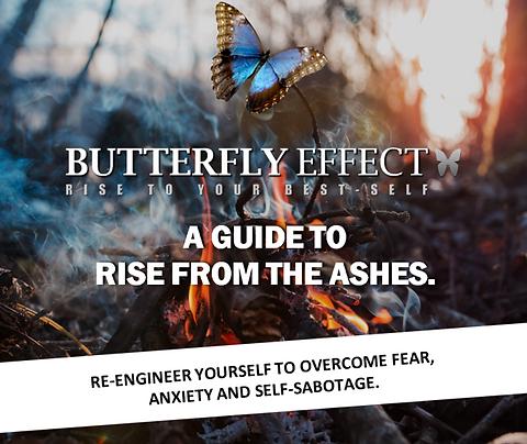 Butterfly Effect eBook