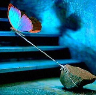 #21 Butterfly Effect/Our Origin Story- waiting for NLV