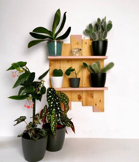 Bespoke plant trinket shelf.