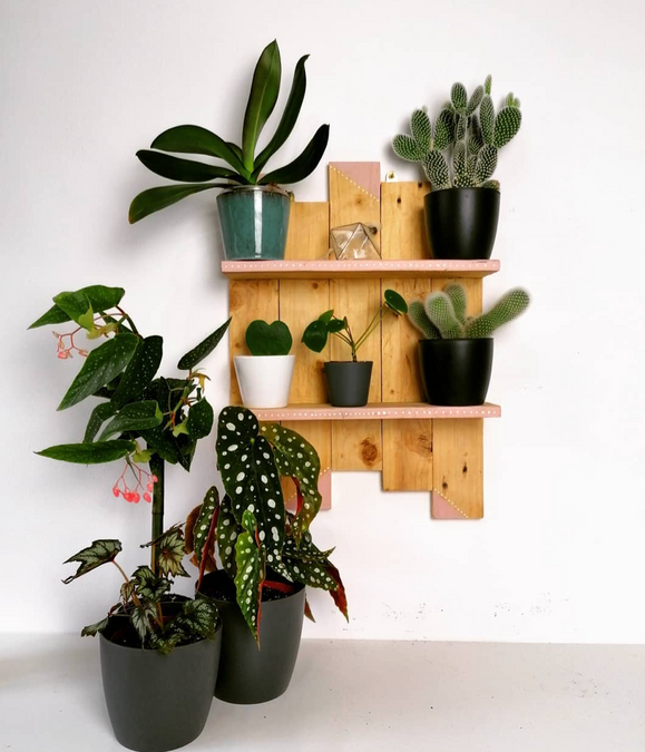 Bespoke plant trinket shelf.