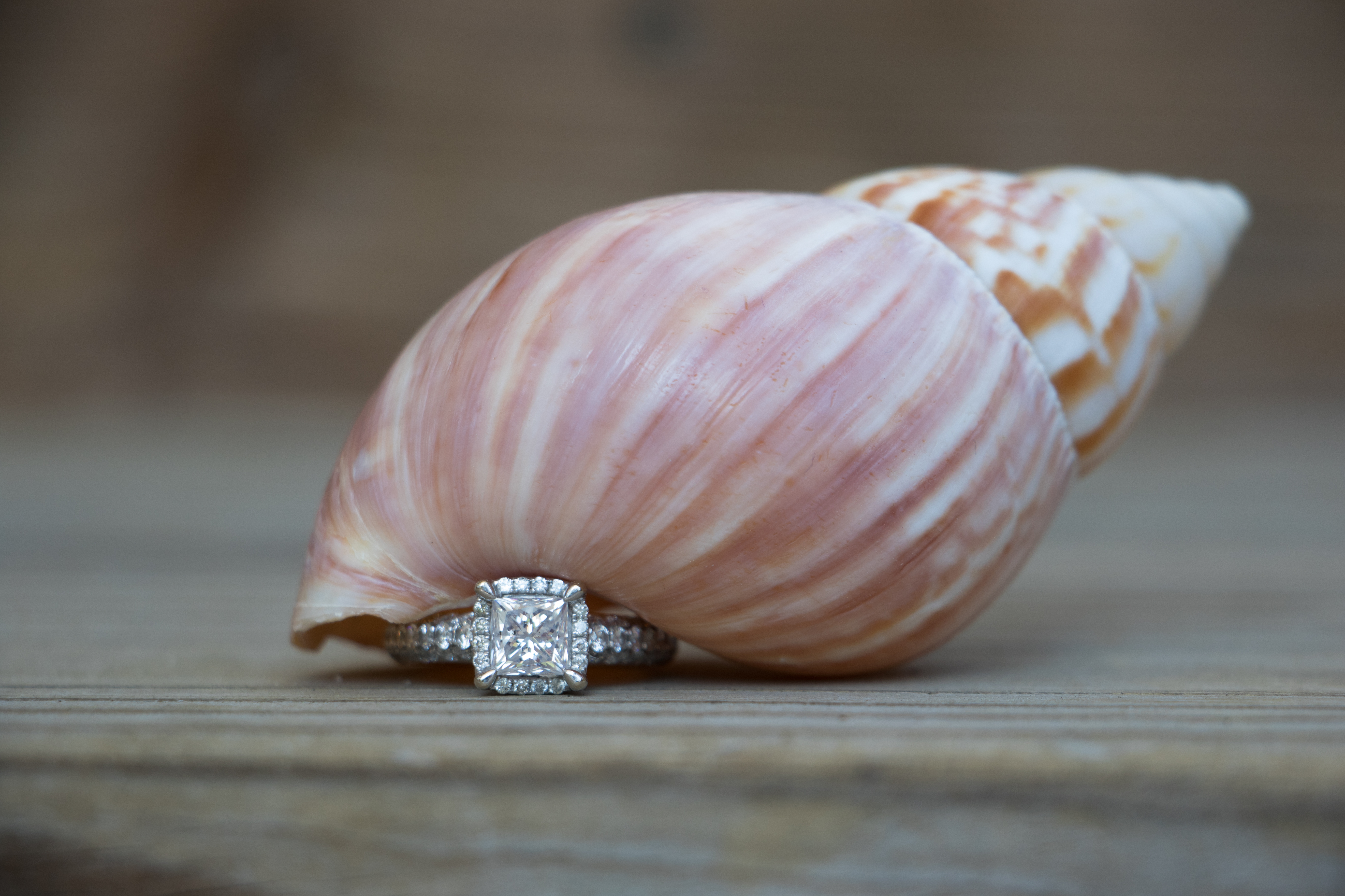 Shell Diamond