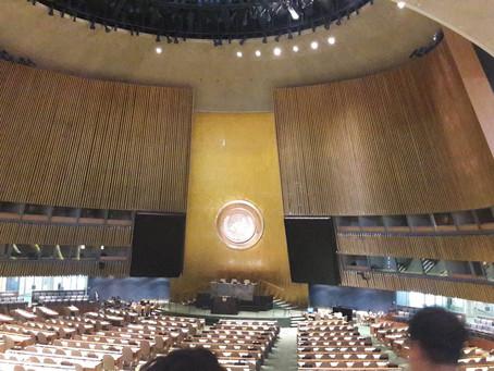 유엔 노인 총회