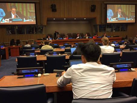 제 8차 UN 고령화 개방형 실무 회의