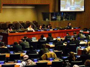 UN Visit Report