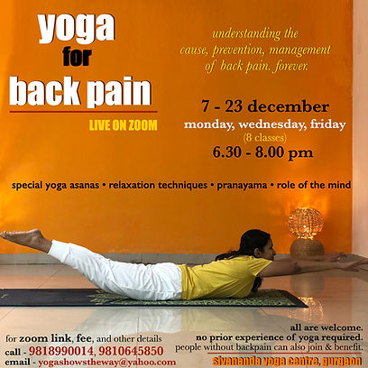 back therapy online 5.jpg