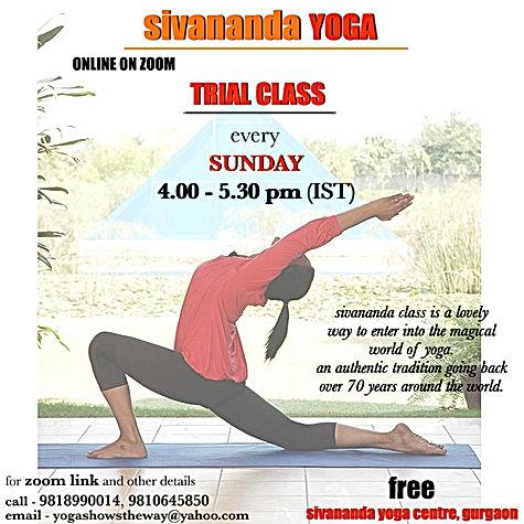 sivananda daily open class trial.jpg