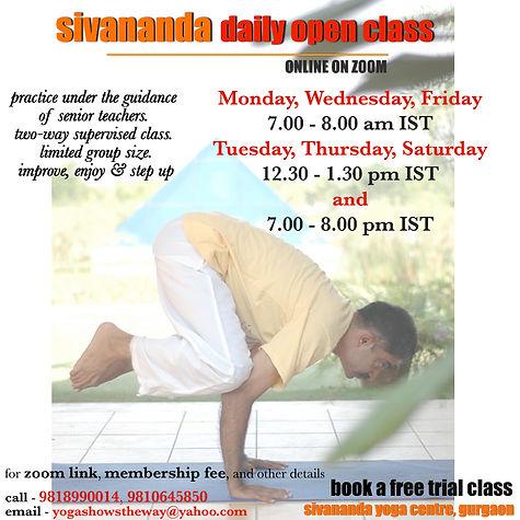 sivananda daily open class.jpg