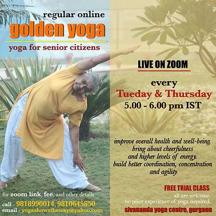 golden yoga online.jpg