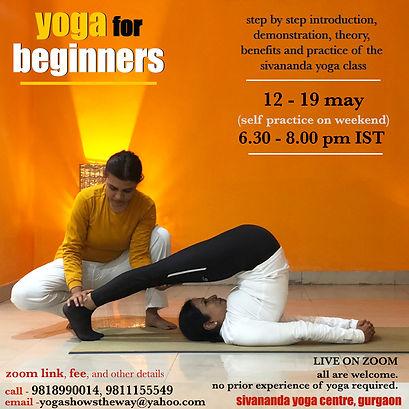 online beginners course 28.jpg