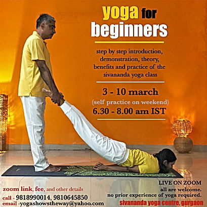 online beginners course 24.jpg
