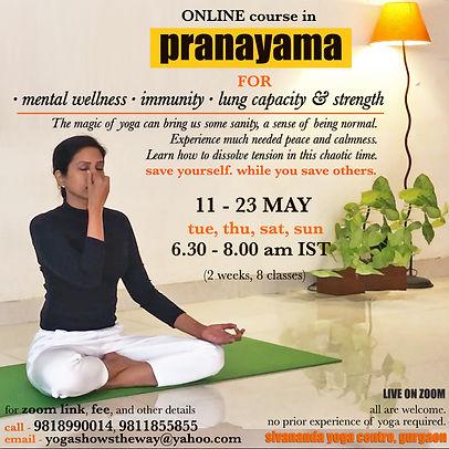 online pranayama course may.jpg
